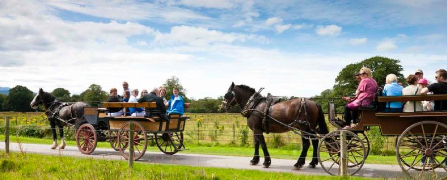 Jaunting car tour, Echt Ierland