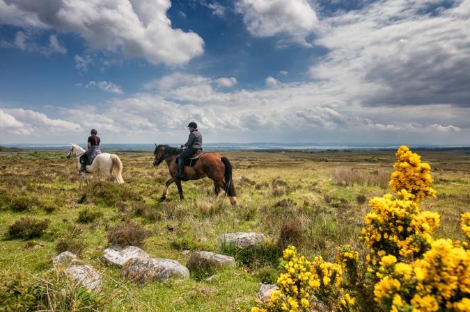 Paardrijden, Echt Ierland