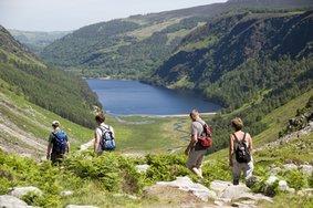 Echt Ierland, Wicklow Mountains, Rondreis ierland