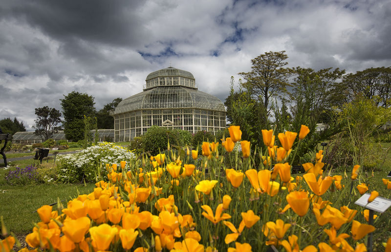 National Botanic Gardens, Dublin, Ierland